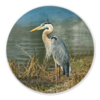 Great Blue Heron Bird at the Pond Ceramic Knob