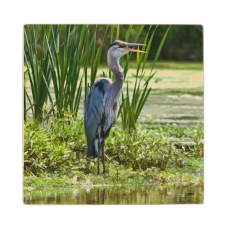 Great Blue Heron Bird at the Pond Wood Coaster