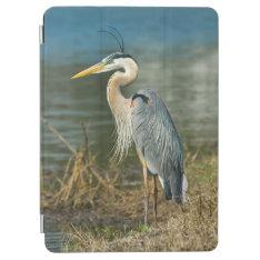 Great Blue Heron Bird iPad Air Cover at Zazzle