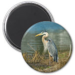 Great Blue Heron Bird Magnet