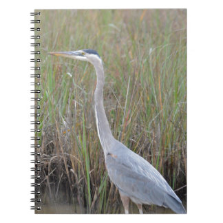 Great Blue Heron Bird Nature Notebook