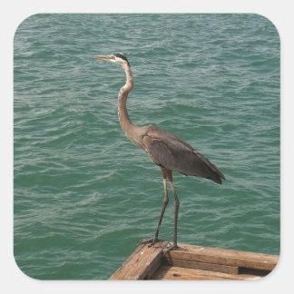 Great Blue Heron Bird Stickers