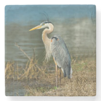 Great Blue Heron Bird Stone Coaster
