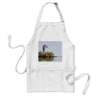 Great Blue Heron Bird Wildlife Animals Adult Apron