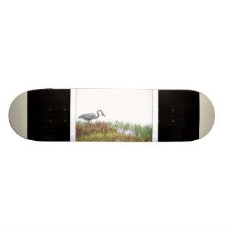 Great Blue Heron Bird Wildlife Animals Skateboard