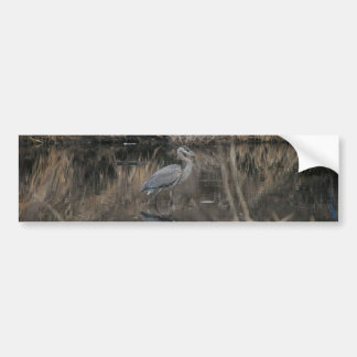 Great Blue Heron Bumper Sticker