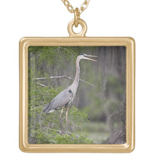 Great Blue Heron calling form cypress tree Jewelry