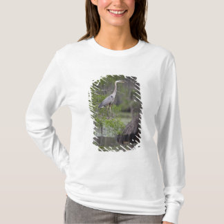 Great Blue Heron calling form cypress tree T-Shirt
