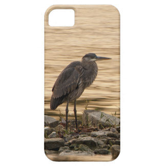 Great Blue Heron iPhone 5 Cases