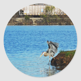 Great Blue Heron Classic Round Sticker