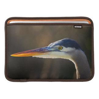 Great Blue Heron, close up portrait MacBook Air Sleeve