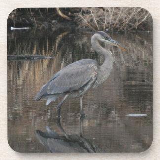 Great Blue Heron Coasters