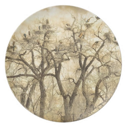 Great Blue Heron Colonies Fine Art Party Plate