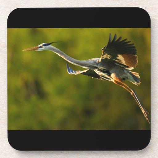 great blue heron drink coaster