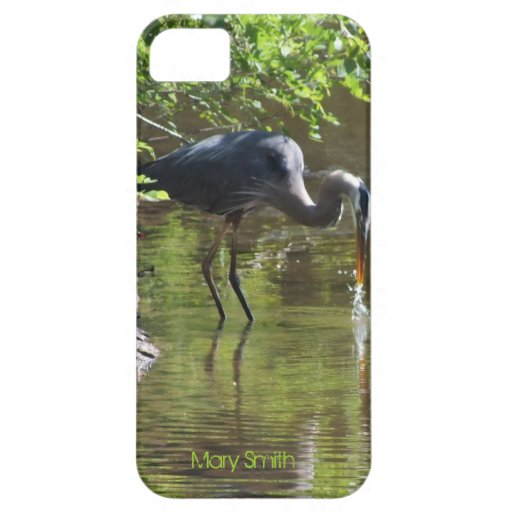 Great blue Heron Drinking iPhone 5 case