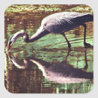 Great Blue Heron Fishing Square Sticker
