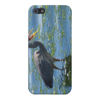 Great Blue Heron Fishing Wilderness Art iPhone SE/5/5s Cover
