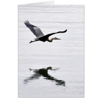 Great Blue Heron Flying Card