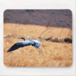 Great blue heron flying Low Mouse Pad
