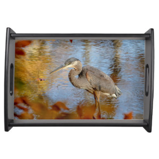 Great Blue Heron framed with fall foliage Serving Tray