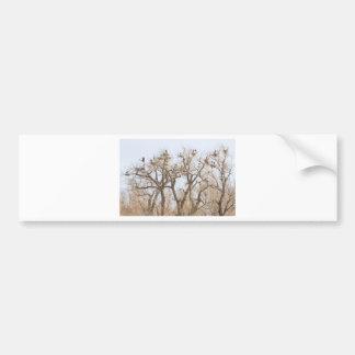 Great Blue Heron Hangout Bumper Sticker