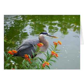 Great Blue Heron II Card