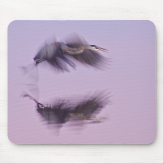 Great Blue Heron in Flight evening reflections Mousepad