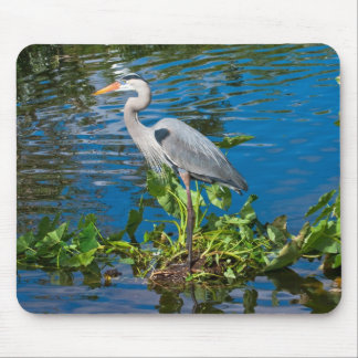 Great Blue Heron in Lake Mouse Pad