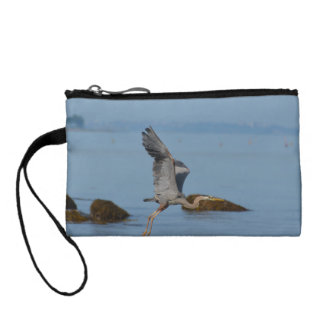 Great Blue Heron in Maine Change Purses