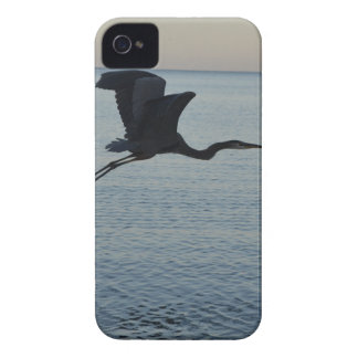 Great Blue Heron in Naples, FL iPhone 4 Case-Mate Cases