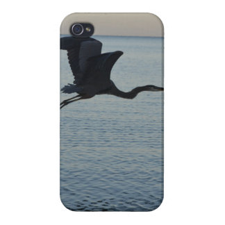Great Blue Heron in Naples, FL iPhone 4 Covers