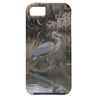 Great Blue Heron iPhone SE/5/5s Case