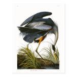 Great Blue Heron, John James Audubon Fine Art Postcard
