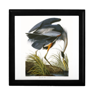 Great Blue Heron, John James Audubon Jewelry Box