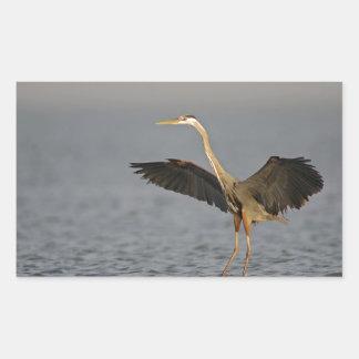 Great Blue Heron Landing Galveston Island Texas Rectangular Sticker