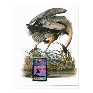 Great Blue Heron maximum card Audubon Postcard