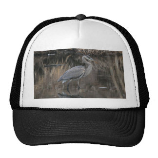 Great Blue Heron Mesh Hats