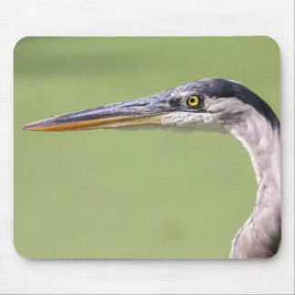 Great Blue Heron Mouse Pads
