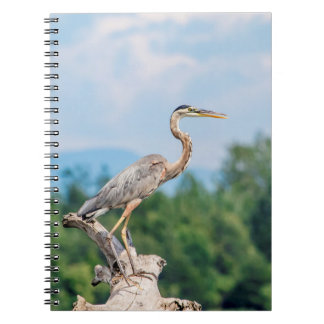 Great Blue Heron Notebook