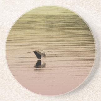 Great Blue Heron on Gradient Background Drink Coaster