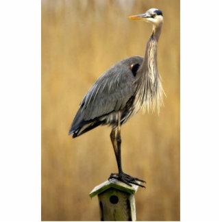 Great Blue heron Photo Sculpture