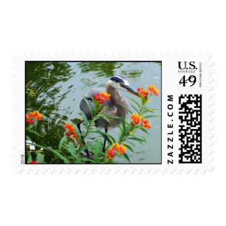 Great Blue Heron Postage