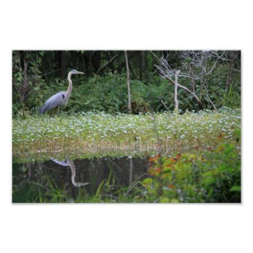 Beach Themed Great Blue Heron Poster
