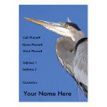 Great Blue Heron Profile Card Business Card Template