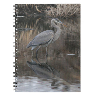 Great Blue Heron Reflection Notebook