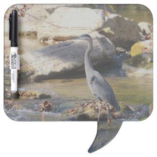 Great Blue Heron standing in creek photo Dry Erase Boards