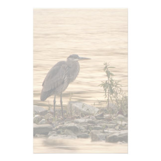 Great Blue Heron Stationery
