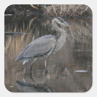 Great Blue Heron Square Sticker