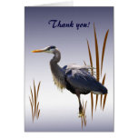 Great Blue Heron Thank You Cards