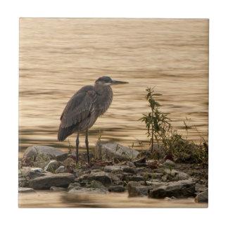 Great Blue Heron Tiles